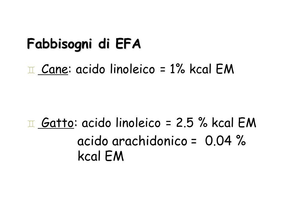 Fabbisogni di EFA ` Cane: acido linoleico = 1% kcal EM ` Gatto: acido linoleico = 2.5 % kcal EM acido arachidonico = 0.04 % kcal EM