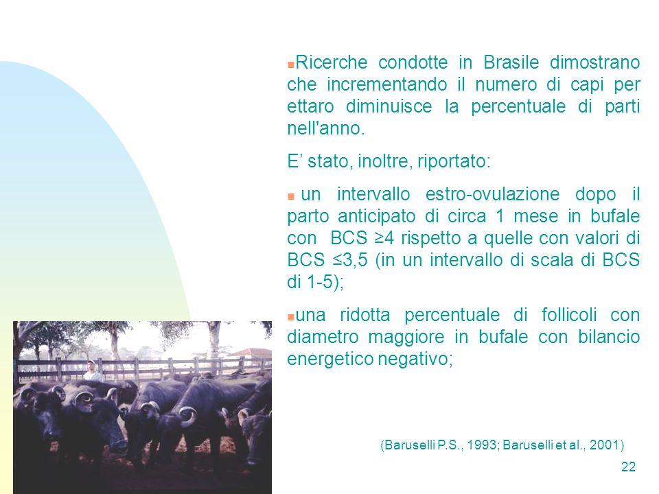 22 Ricerche condotte in Brasile dimostrano che incrementando il numero di capi per ettaro diminuisce la percentuale di parti nell anno.