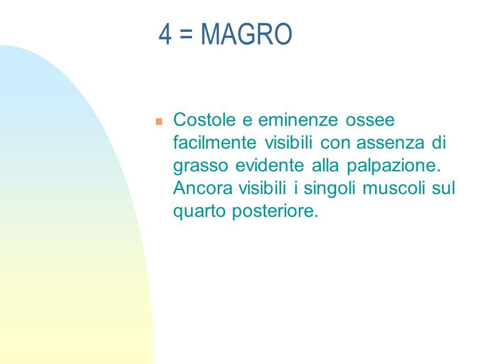 4 = MAGRO Costole e eminenze ossee facilmente visibili con assenza di grasso evidente alla palpazione.