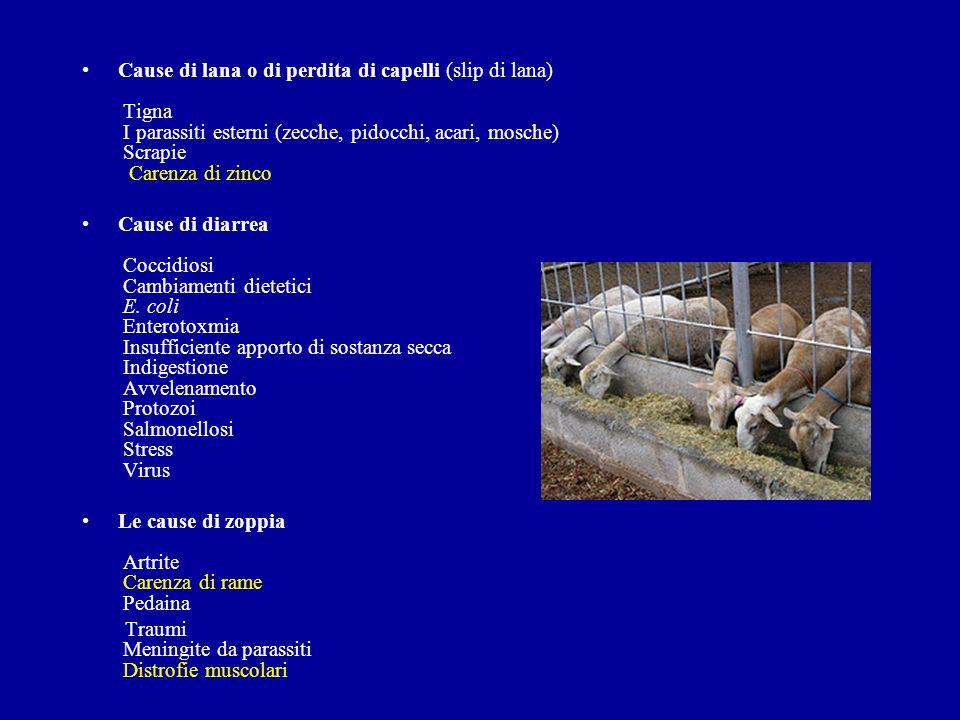 Cause di lana o di perdita di capelli (slip di lana) Tigna I parassiti esterni (zecche, pidocchi, acari, mosche) Scrapie Carenza di zinco Cause di dia