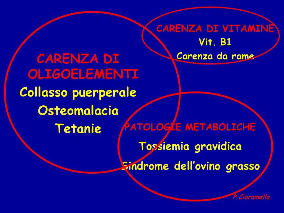 CARENZA DI OLIGOELEMENTI Collasso puerperale Osteomalacia Tetanie CARENZA DI VITAMINE Vit. B1 Carenza da rame PATOLOGIE METABOLICHE Tossiemia gravidic