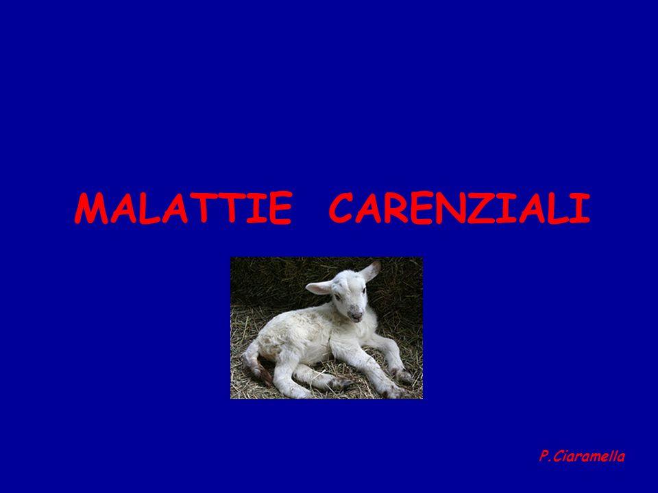 MALATTIE CARENZIALI P.Ciaramella