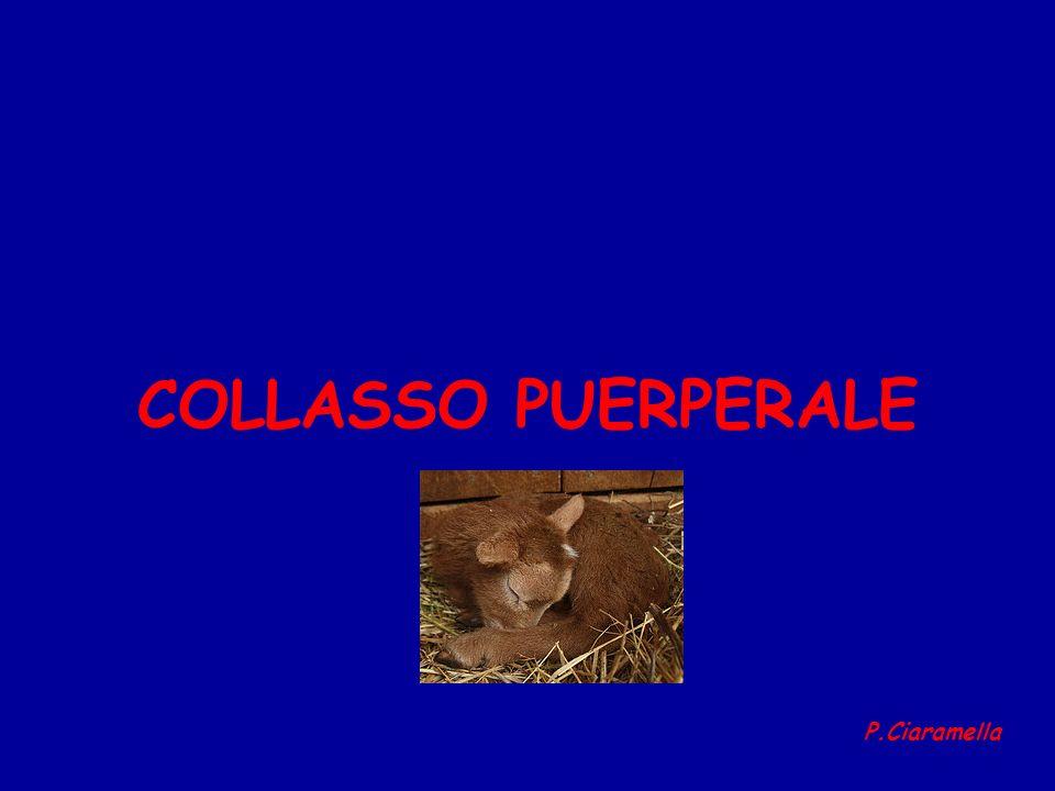 COLLASSO PUERPERALE P.Ciaramella