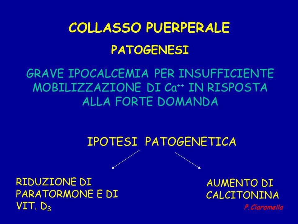 COLLASSO PUERPERALE GRAVE IPOCALCEMIA PER INSUFFICIENTE MOBILIZZAZIONE DI Ca ++ IN RISPOSTA ALLA FORTE DOMANDA PATOGENESI IPOTESI PATOGENETICA RIDUZIO
