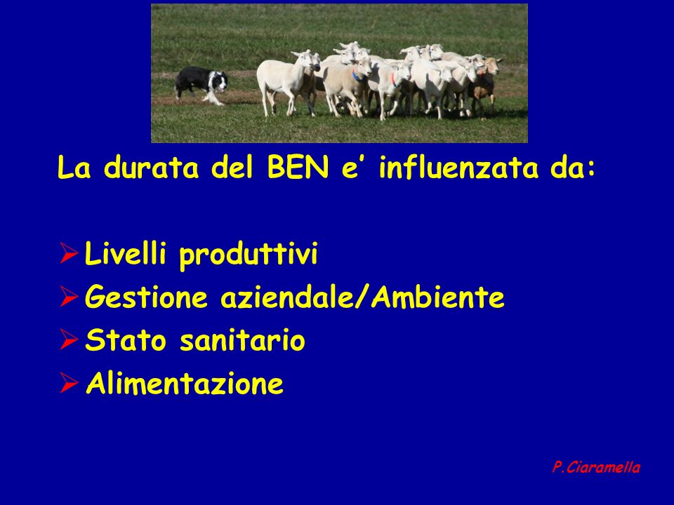 La durata del BEN e influenzata da: Livelli produttivi Gestione aziendale/Ambiente Stato sanitario Alimentazione P.Ciaramella