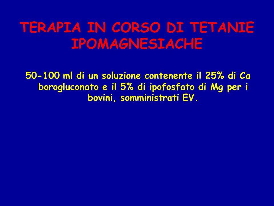 TERAPIA IN CORSO DI TETANIE IPOMAGNESIACHE 50-100 ml di un soluzione contenente il 25% di Ca borogluconato e il 5% di ipofosfato di Mg per i bovini, s