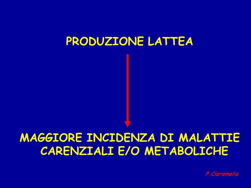 PRODUZIONE LATTEA MAGGIORE INCIDENZA DI MALATTIE CARENZIALI E/O METABOLICHE P.Ciaramella