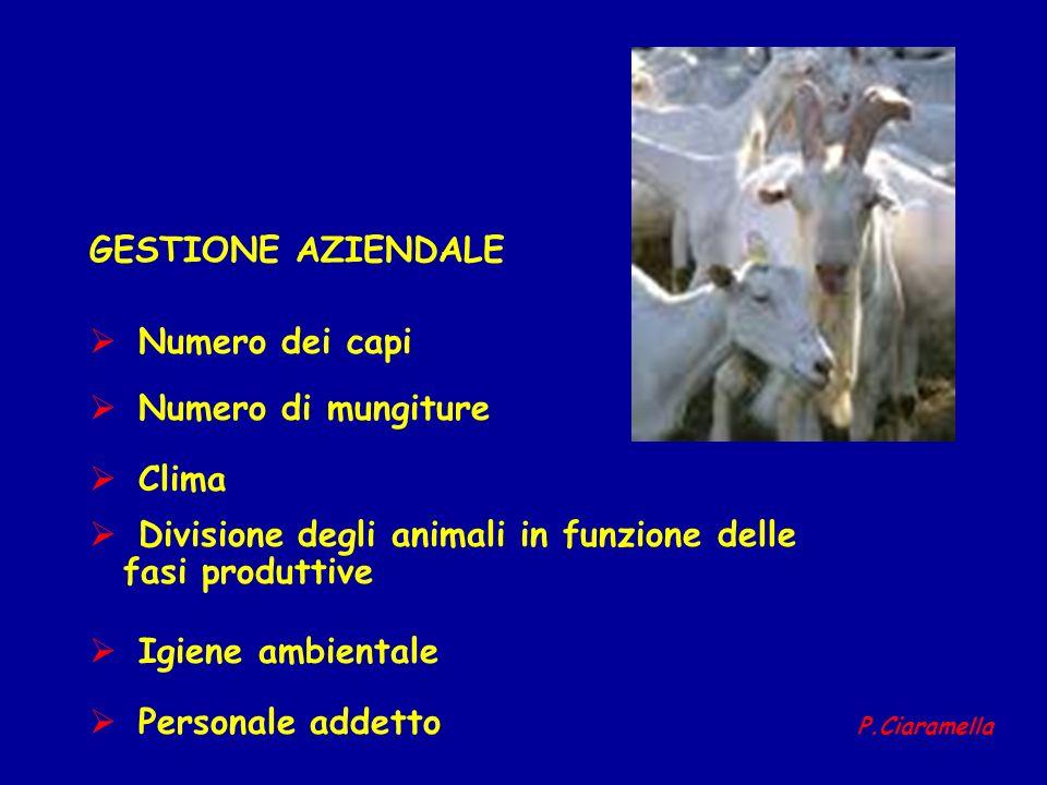 GESTIONE AZIENDALE Numero dei capi Numero di mungiture Clima Divisione degli animali in funzione delle fasi produttive Igiene ambientale Personale add
