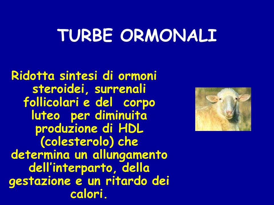 TURBE ORMONALI Ridotta sintesi di ormoni steroidei, surrenali follicolari e del corpo luteo per diminuita produzione di HDL (colesterolo) che determin