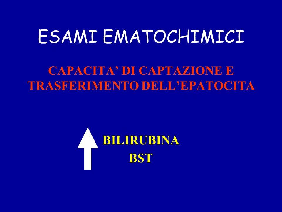 ESAMI EMATOCHIMICI CAPACITA DI CAPTAZIONE E TRASFERIMENTO DELLEPATOCITA BILIRUBINA BST