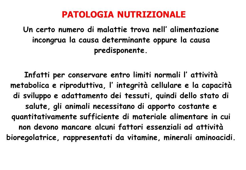 PATOLOGIA NUTRIZIONALE Un certo numero di malattie trova nell alimentazione incongrua la causa determinante oppure la causa predisponente. Infatti per
