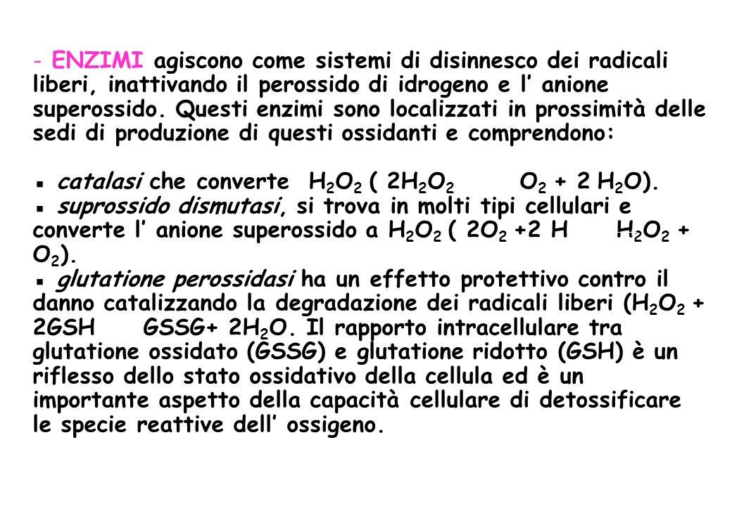 - ENZIMI agiscono come sistemi di disinnesco dei radicali liberi, inattivando il perossido di idrogeno e l anione superossido. Questi enzimi sono loca