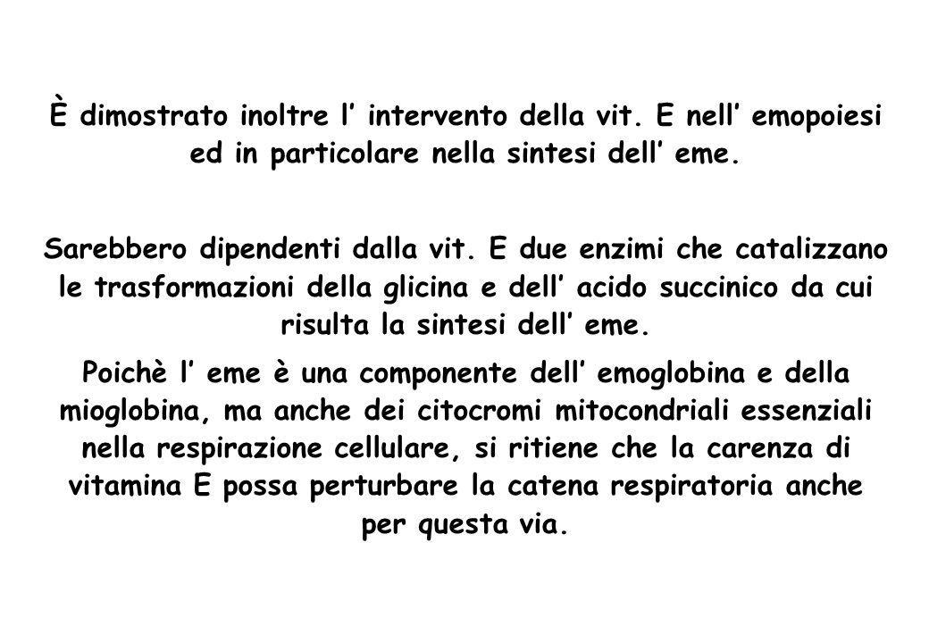 È dimostrato inoltre l intervento della vit. E nell emopoiesi ed in particolare nella sintesi dell eme. Sarebbero dipendenti dalla vit. E due enzimi c
