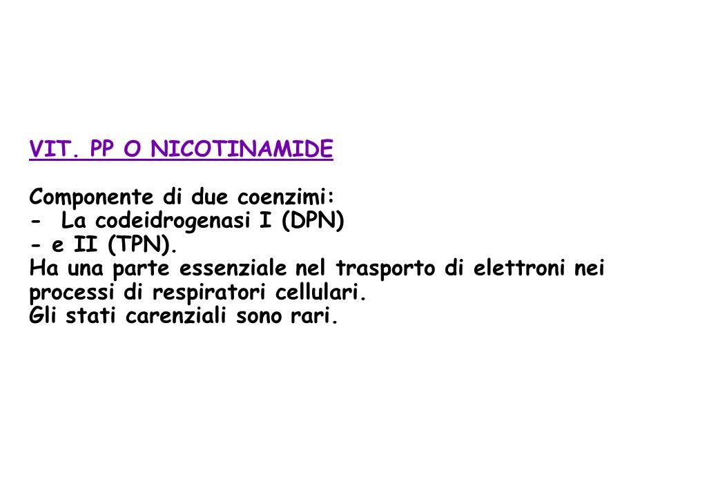 VIT. PP O NICOTINAMIDE Componente di due coenzimi: - La codeidrogenasi I (DPN) - e II (TPN). Ha una parte essenziale nel trasporto di elettroni nei pr