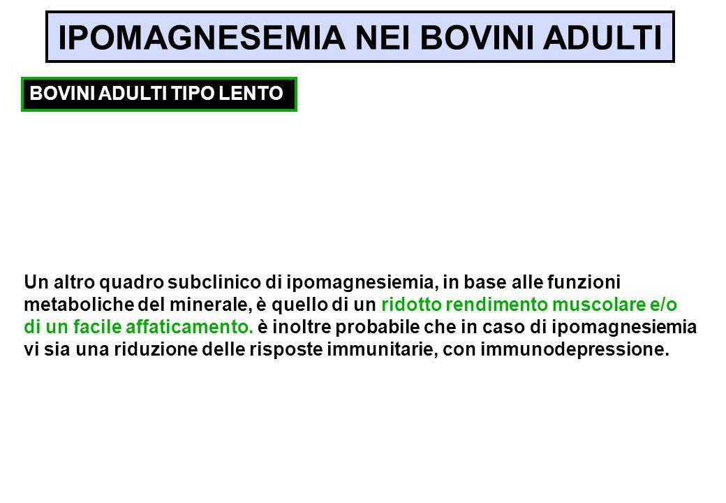 Un altro quadro subclinico di ipomagnesiemia, in base alle funzioni metaboliche del minerale, è quello di un ridotto rendimento muscolare e/o di un fa