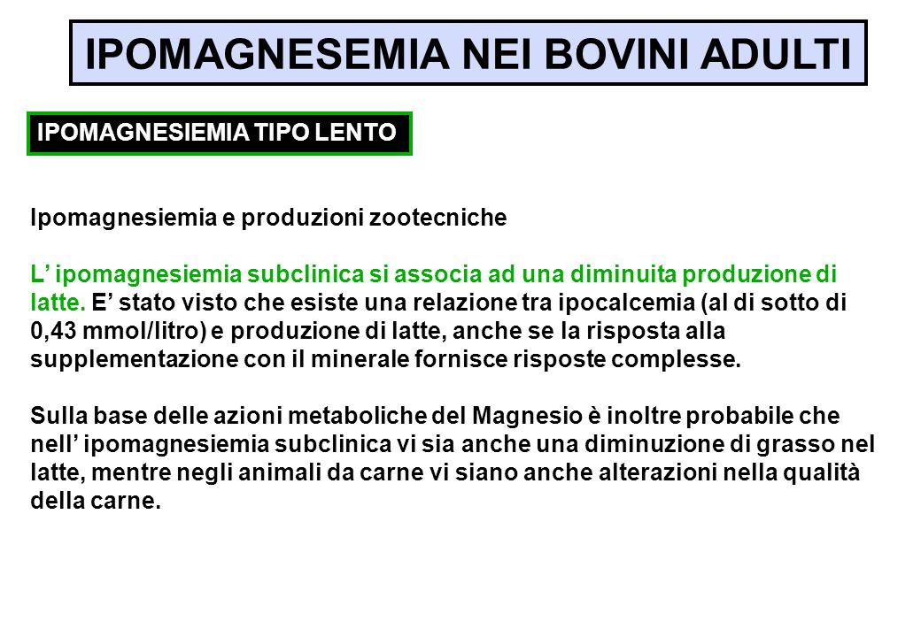Ipomagnesiemia e produzioni zootecniche L ipomagnesiemia subclinica si associa ad una diminuita produzione di latte. E stato visto che esiste una rela