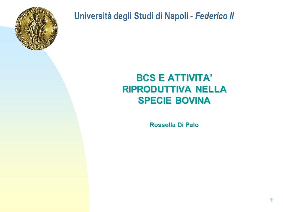 1 Università degli Studi di Napoli - Federico II BCS E ATTIVITA RIPRODUTTIVA NELLA SPECIE BOVINA Rossella Di Palo