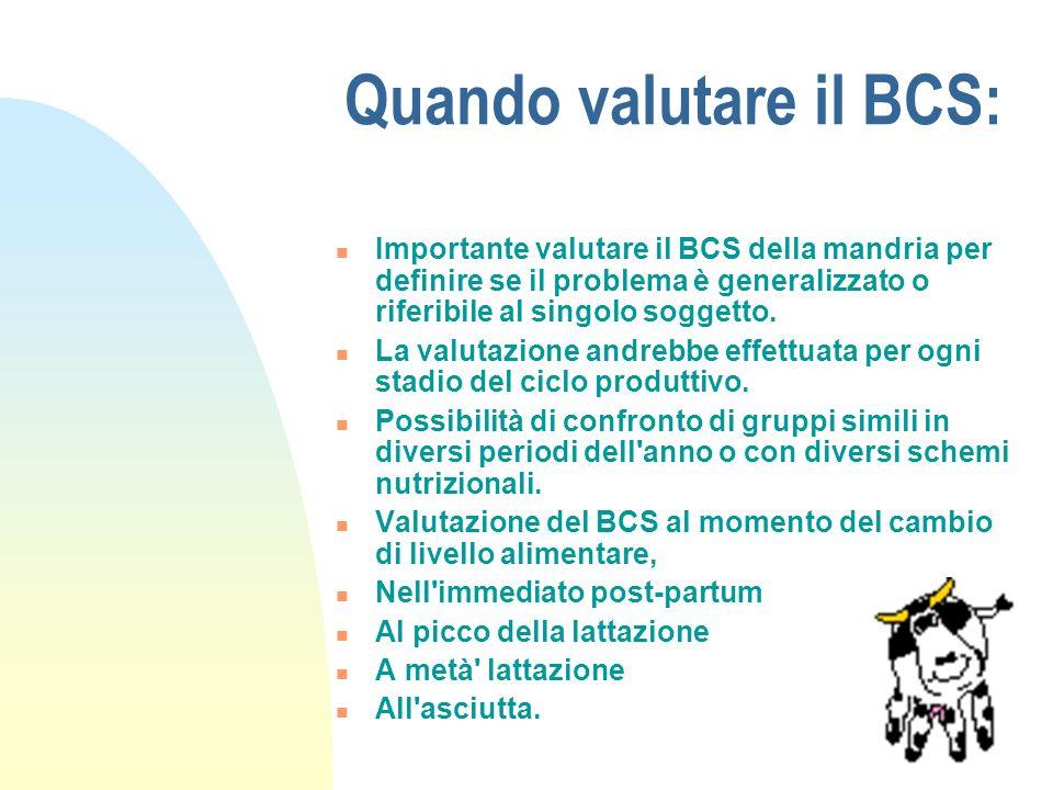 Quando valutare il BCS: Importante valutare il BCS della mandria per definire se il problema è generalizzato o riferibile al singolo soggetto.