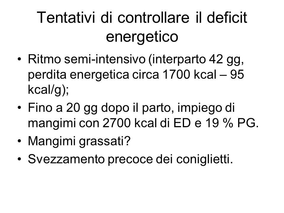 Tentativi di controllare il deficit energetico Ritmo semi-intensivo (interparto 42 gg, perdita energetica circa 1700 kcal – 95 kcal/g); Fino a 20 gg dopo il parto, impiego di mangimi con 2700 kcal di ED e 19 % PG.