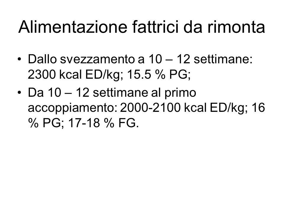 Alimentazione fattrici da rimonta Dallo svezzamento a 10 – 12 settimane: 2300 kcal ED/kg; 15.5 % PG; Da 10 – 12 settimane al primo accoppiamento: 2000-2100 kcal ED/kg; 16 % PG; 17-18 % FG.