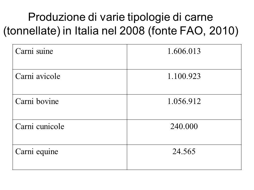Produzione di varie tipologie di carne (tonnellate) in Italia nel 2008 (fonte FAO, 2010) Carni suine1.606.013 Carni avicole1.100.923 Carni bovine1.056.912 Carni cunicole240.000 Carni equine24.565