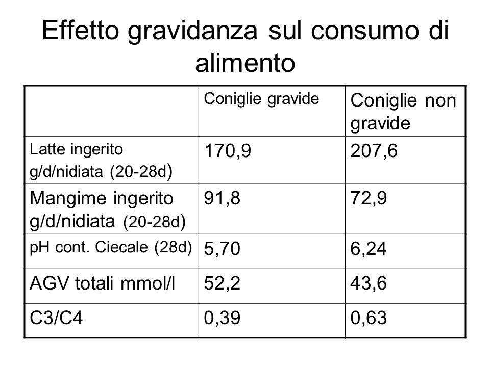 Effetto gravidanza sul consumo di alimento Coniglie gravide Coniglie non gravide Latte ingerito g/d/nidiata (20-28d ) 170,9207,6 Mangime ingerito g/d/nidiata (20-28d ) 91,872,9 pH cont.