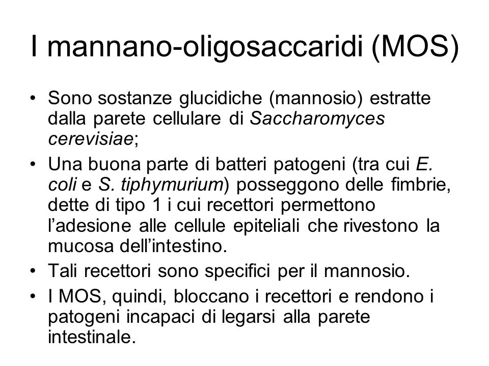 I mannano-oligosaccaridi (MOS) Sono sostanze glucidiche (mannosio) estratte dalla parete cellulare di Saccharomyces cerevisiae; Una buona parte di batteri patogeni (tra cui E.