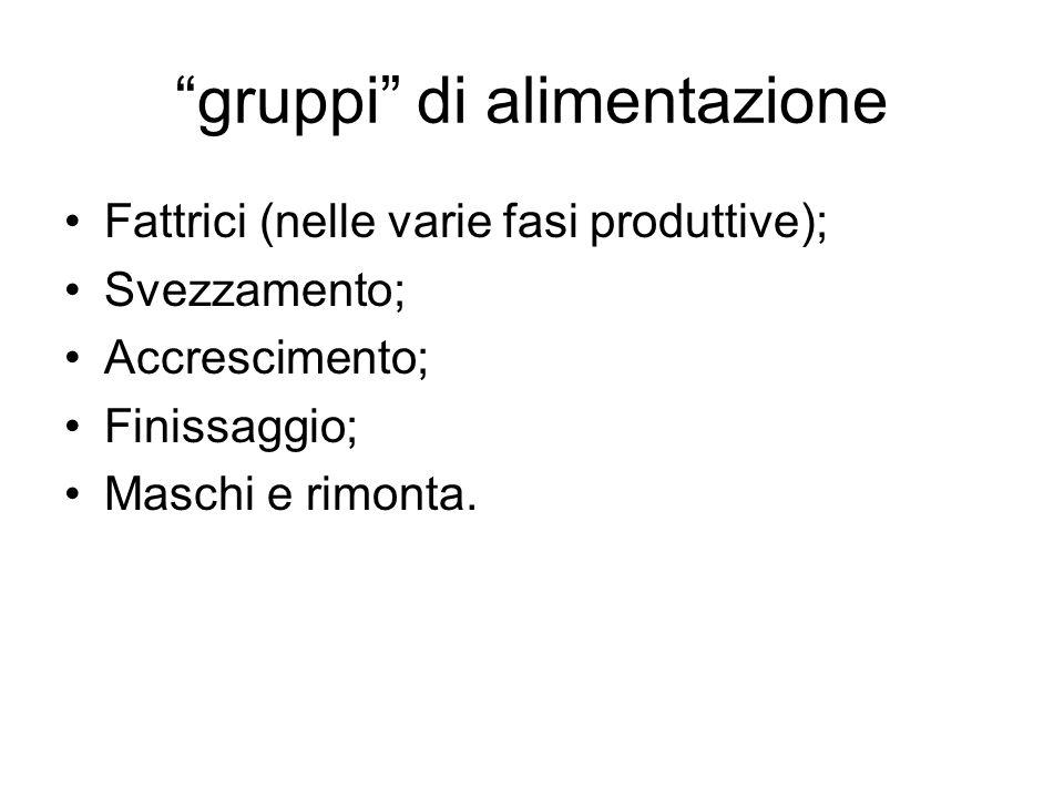 gruppi di alimentazione Fattrici (nelle varie fasi produttive); Svezzamento; Accrescimento; Finissaggio; Maschi e rimonta.