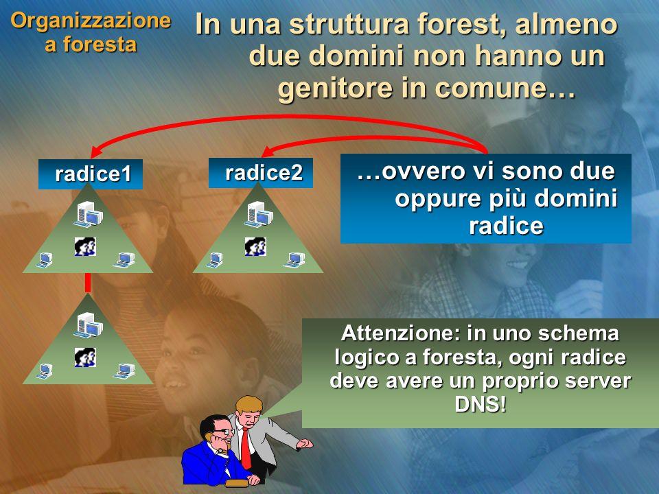 Organizzazione a foresta In una struttura forest, almeno due domini non hanno un genitore in comune… …ovvero vi sono due oppure più domini radice Atte