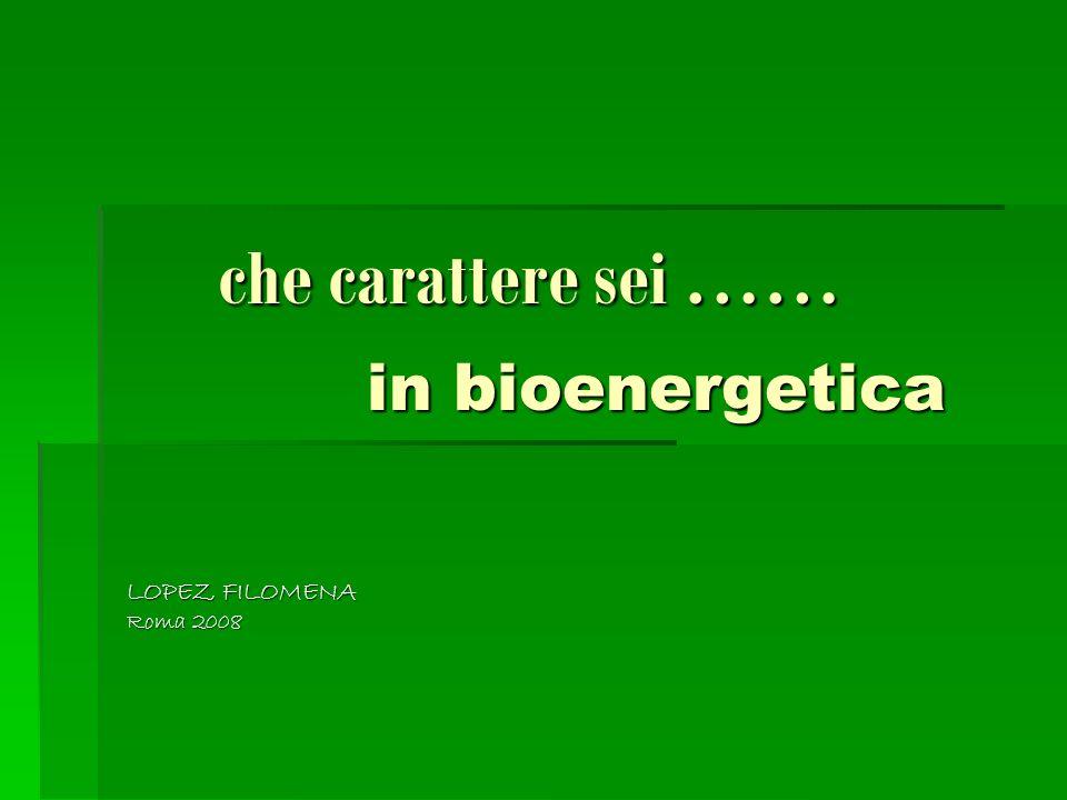 che carattere sei …… in bioenergetica che carattere sei …… in bioenergetica LOPEZ FILOMENA LOPEZ FILOMENA Roma 2008