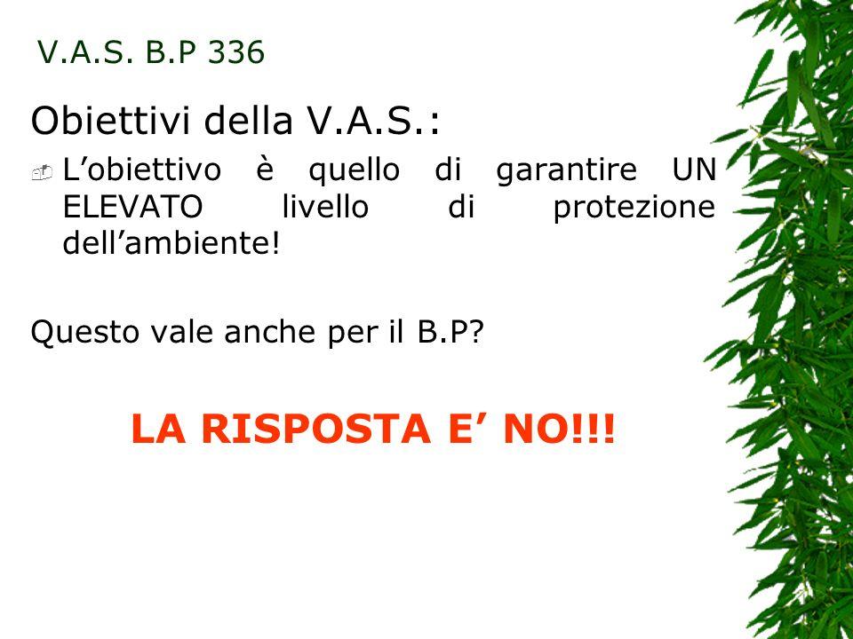 Obiettivi della V.A.S.: Lobiettivo è quello di garantire UN ELEVATO livello di protezione dellambiente.