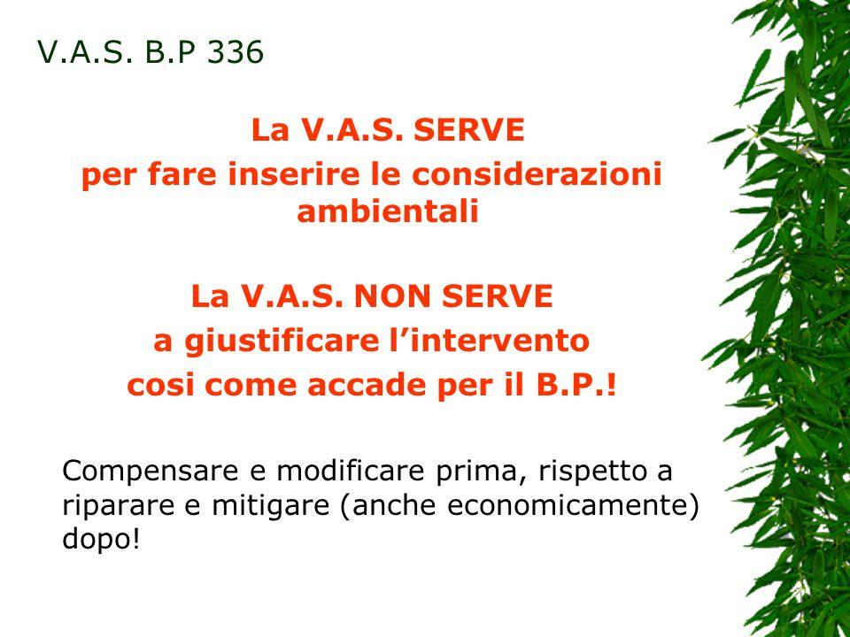 La V.A.S. SERVE per fare inserire le considerazioni ambientali La V.A.S.