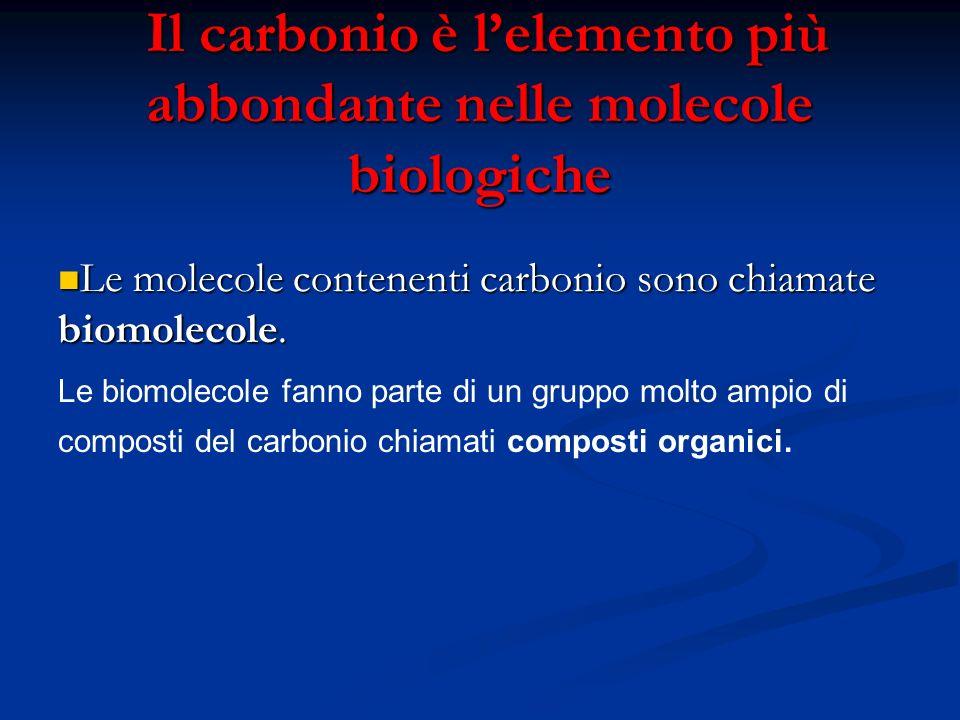 Il carbonio è lelemento più abbondante nelle molecole biologiche Il carbonio è lelemento più abbondante nelle molecole biologiche Le molecole contenen
