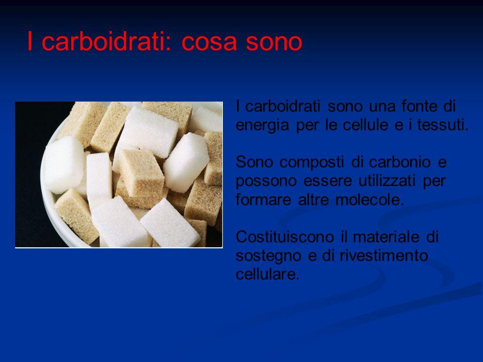 I carboidrati: cosa sono I carboidrati sono una fonte di energia per le cellule e i tessuti. Sono composti di carbonio e possono essere utilizzati per