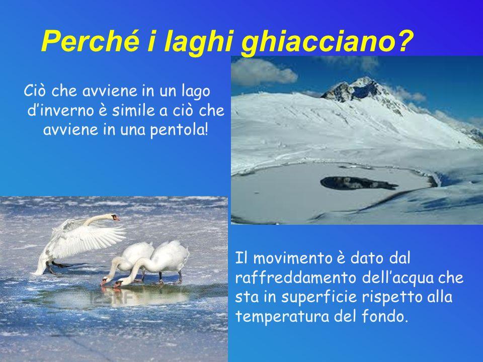 Perché i laghi ghiacciano? Ciò che avviene in un lago dinverno è simile a ciò che avviene in una pentola! Il movimento è dato dal raffreddamento della
