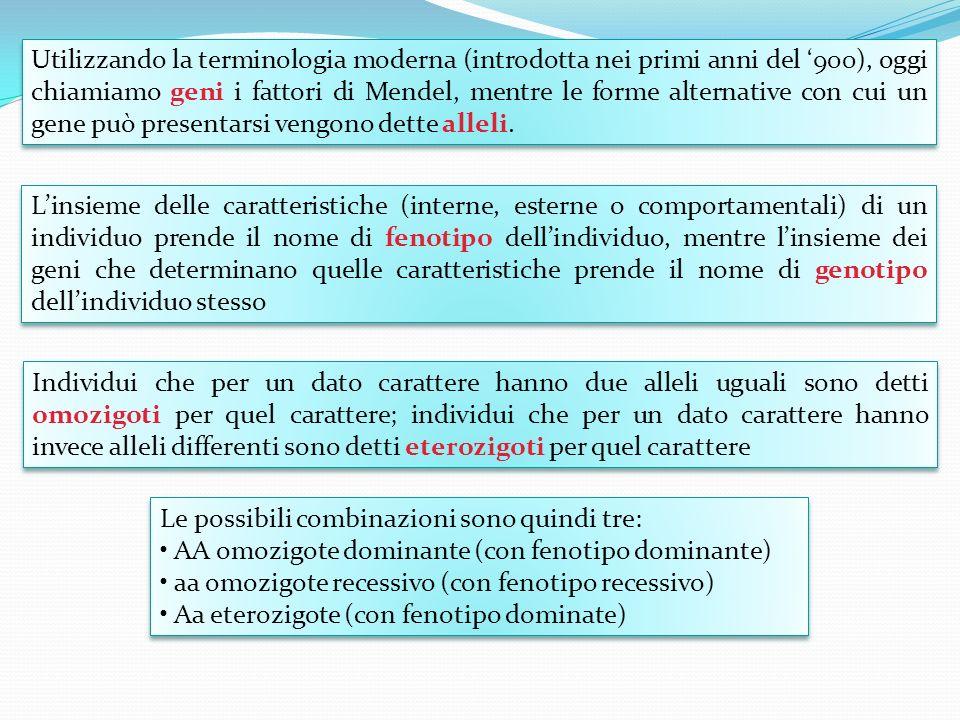 Utilizzando la terminologia moderna (introdotta nei primi anni del 900), oggi chiamiamo geni i fattori di Mendel, mentre le forme alternative con cui