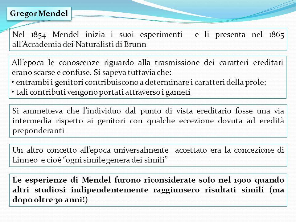 Nel 1854 Mendel inizia i suoi esperimenti e li presenta nel 1865 allAccademia dei Naturalisti di Brunn Allepoca le conoscenze riguardo alla trasmissio