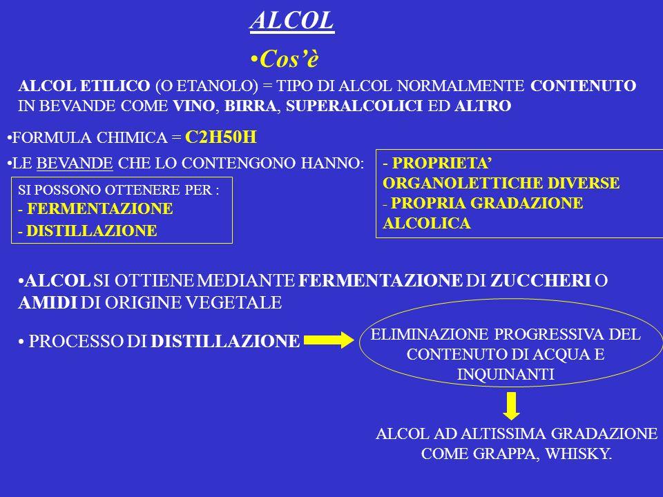 ALCOL Cosè ALCOL ETILICO (O ETANOLO) = TIPO DI ALCOL NORMALMENTE CONTENUTO IN BEVANDE COME VINO, BIRRA, SUPERALCOLICI ED ALTRO FORMULA CHIMICA = C2H50