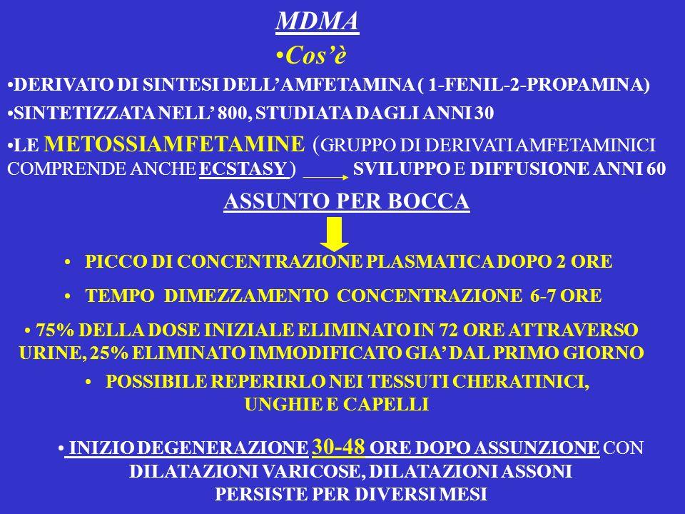 MDMA Cosè DERIVATO DI SINTESI DELLAMFETAMINA ( 1-FENIL-2-PROPAMINA) SINTETIZZATA NELL 800, STUDIATA DAGLI ANNI 30 LE METOSSIAMFETAMINE ( GRUPPO DI DER