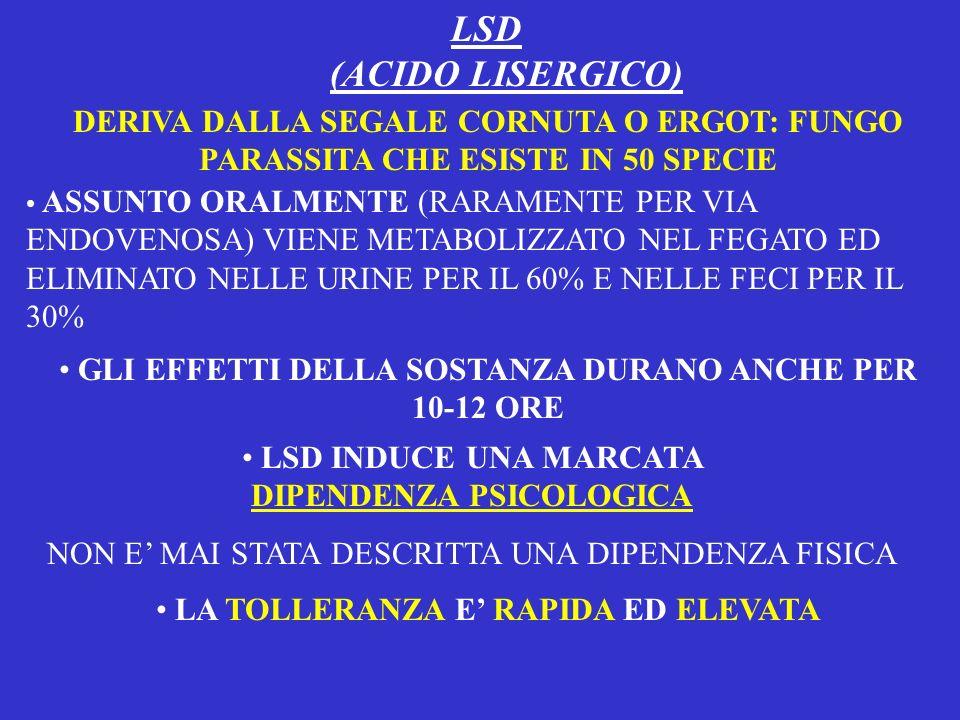 LSD (ACIDO LISERGICO) DERIVA DALLA SEGALE CORNUTA O ERGOT: FUNGO PARASSITA CHE ESISTE IN 50 SPECIE ASSUNTO ORALMENTE (RARAMENTE PER VIA ENDOVENOSA) VI