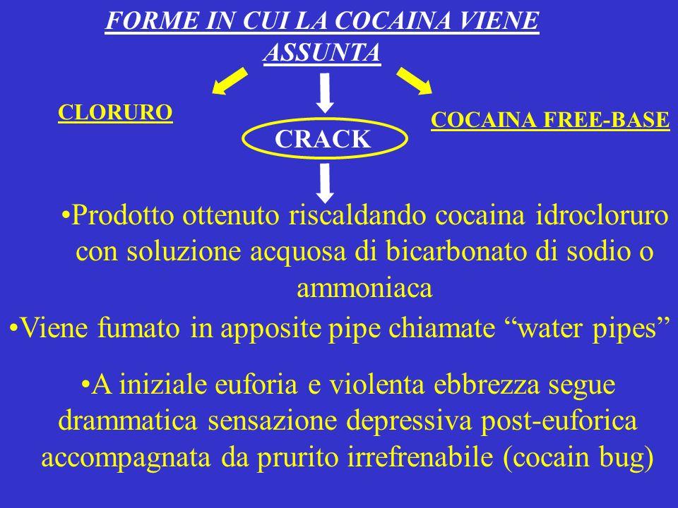 FORME IN CUI LA COCAINA VIENE ASSUNTA Prodotto ottenuto riscaldando cocaina idrocloruro con soluzione acquosa di bicarbonato di sodio o ammoniaca Vien