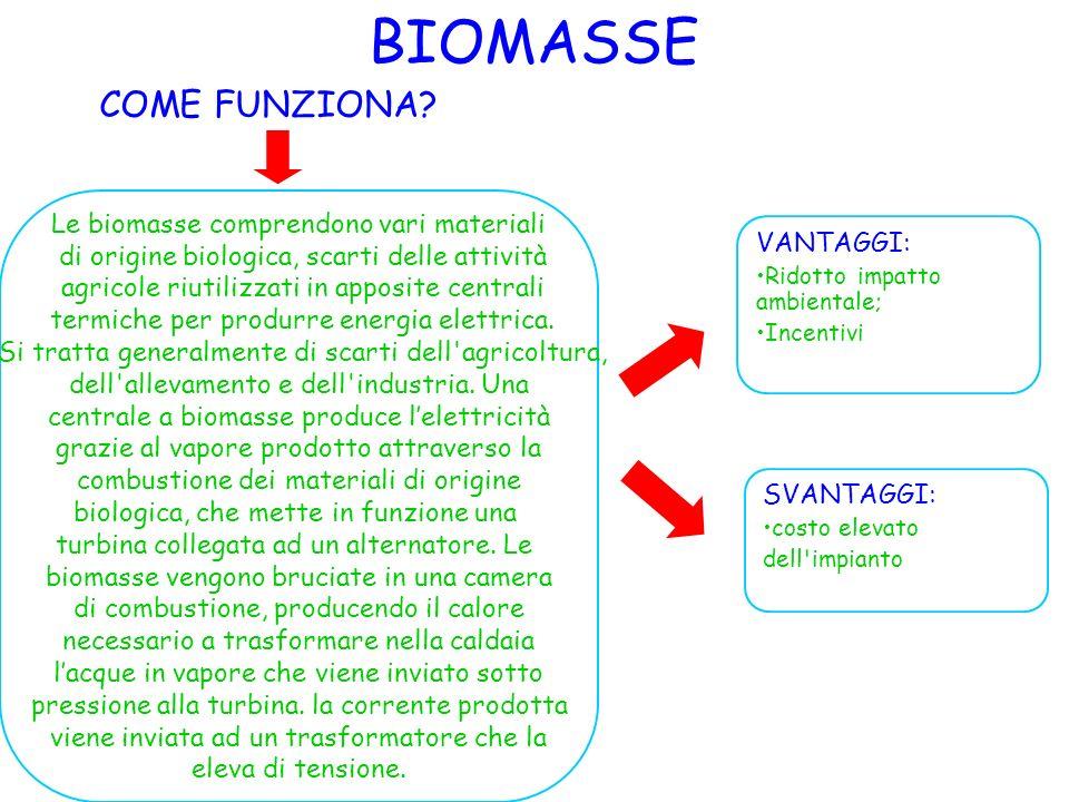 BIOMASSE COME FUNZIONA? VANTAGGI: Ridotto impatto ambientale; Incentivi SVANTAGGI: costo elevato dell'impianto Le biomasse comprendono vari materiali