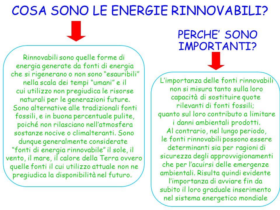 COSA SONO LE ENERGIE RINNOVABILI? PERCHE SONO IMPORTANTI? Rinnovabili sono quelle forme di energia generate da fonti di energia che si rigenerano o no