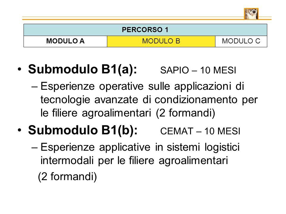 Submodulo B1(a): SAPIO – 10 MESI –Esperienze operative sulle applicazioni di tecnologie avanzate di condizionamento per le filiere agroalimentari (2 formandi) Submodulo B1(b): CEMAT – 10 MESI –Esperienze applicative in sistemi logistici intermodali per le filiere agroalimentari (2 formandi) MODULO AMODULO BMODULO C PERCORSO 1