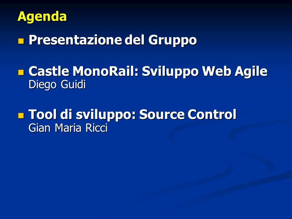 Presentazione del Gruppo Presentazione del Gruppo Castle MonoRail: Sviluppo Web Agile Diego Guidi Castle MonoRail: Sviluppo Web Agile Diego Guidi Tool