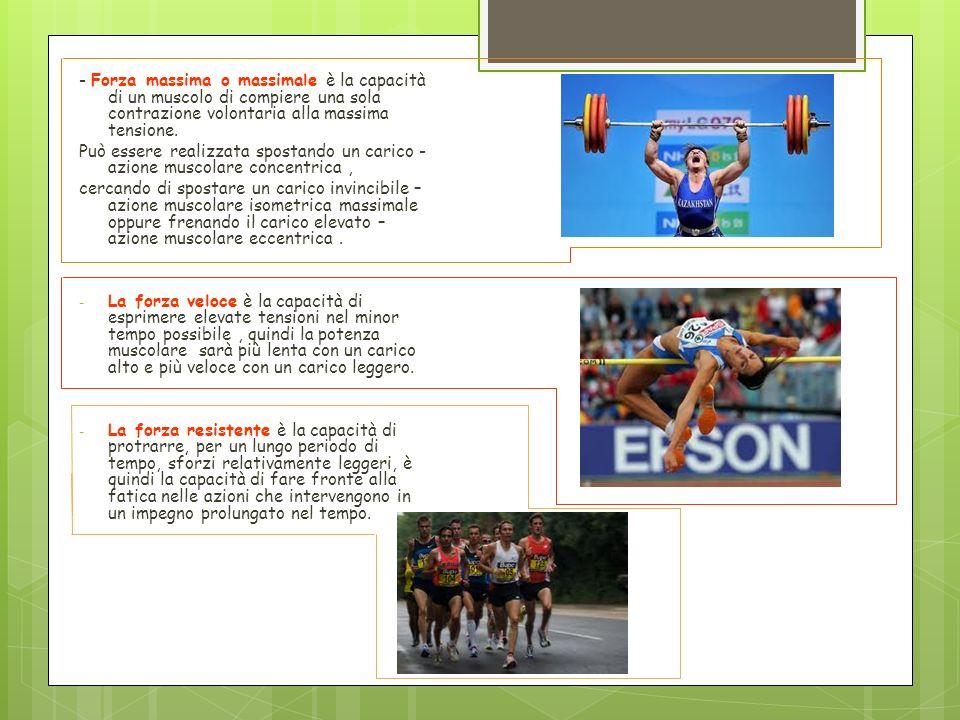 - Forza massima o massimale è la capacità di un muscolo di compiere una sola contrazione volontaria alla massima tensione. Può essere realizzata spost