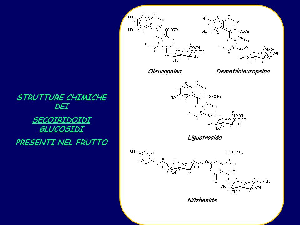 OleuropeinaDemetiloleuropeina Ligustroside Nüzhenide STRUTTURE CHIMICHE DEI SECOIRIDOIDI GLUCOSIDI PRESENTI NEL FRUTTO