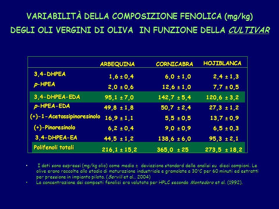 3,4-DHPEA 1,6±0,46,0±1,02,4±1,3 p-HPEA 2,0±0,612,6±1,07,7±0,5 3,4-DHPEA-EDA 95,1±7,0142,7±5,4120,6±3,2 p-HPEA-EDA 49,8±1,850,7±2,427,3±1,2 (+)-1-Acetossipinoresinolo 16,9±1,15,5±0,513,7±0,9 (+)-Pinoresinolo 6,2±0,49,0±0,96,5±0,3 3,4-DHPEA-EA 44,5±1,2138,6±6,095,3±2,1 Polifenoli totali 216,1±15,2365,0±25273,5±18,2 ARBEQUINACORNICABRA HOJIBLANCA I dati sono espressi (mg/kg olio) come media ± deviazione standard delle analisi su dieci campioni.
