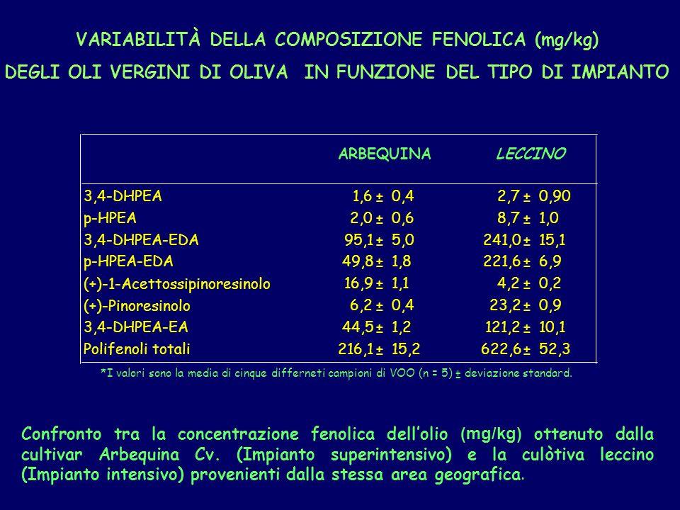 Confronto tra la concentrazione fenolica dellolio (mg/kg) ottenuto dalla cultivar Arbequina Cv.