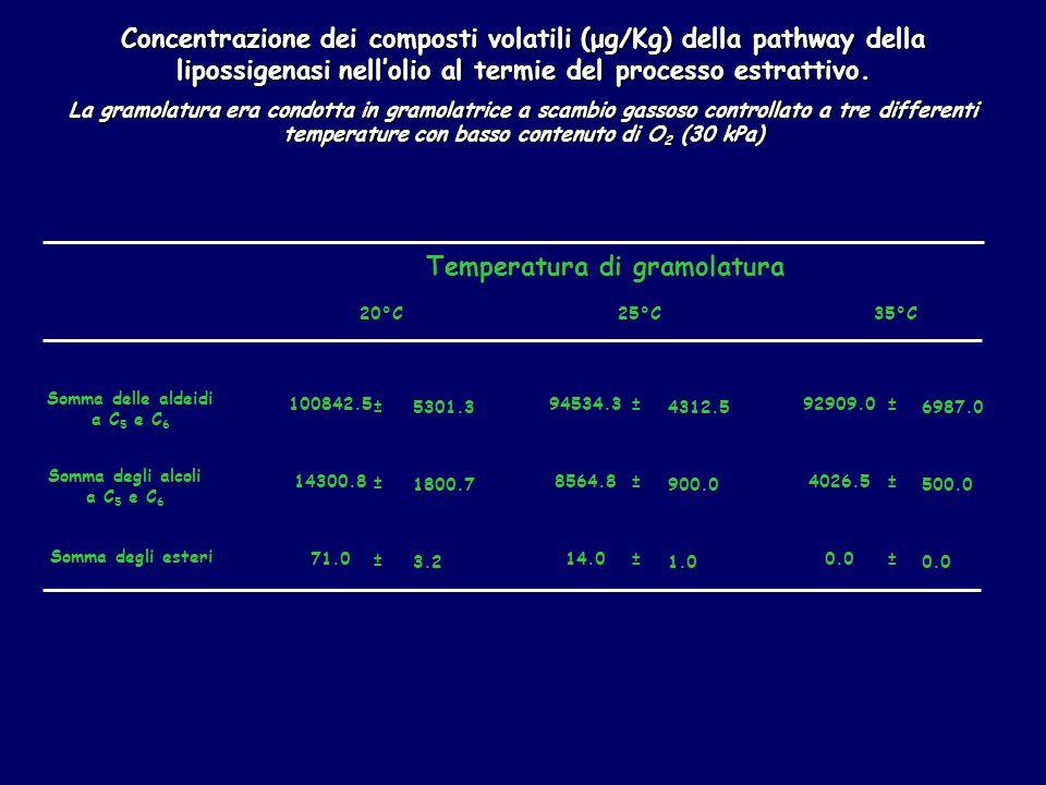 Concentrazione dei composti volatili (μg/Kg) della pathway della lipossigenasi nellolio al termie del processo estrattivo.
